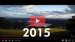 SAND 2015